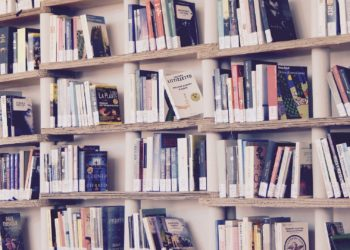Lots of books on wooden shelves against a wall